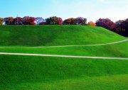 草地攝影元素