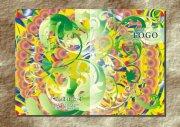 鮮花綠葉青枝-畫冊設計