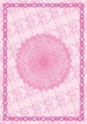 紅粉佳人化妝類證書紋