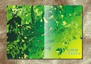 青葉綠枝畫冊封面設計