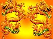 飞龙 中国龙 金色巨龙