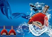 XO红酒海报 酒包装设计 包装设计素材 新春快乐展板 2013蛇年大吉