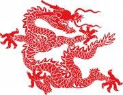 中国红龙 红色飞龙