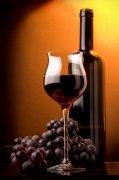 葡萄酒素材