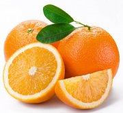 橙子永利娱乐官方网站