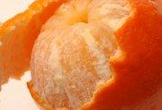 橘子永利娱乐官方网站
