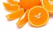橙子摄影元素02