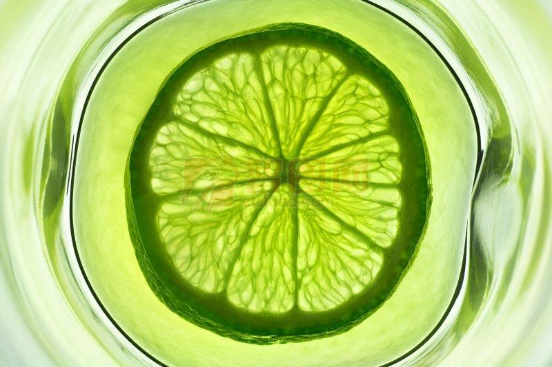 柠檬片摄影