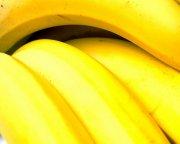 香蕉澳门永利赌场网址03