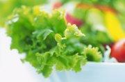 蔬菜摄影元素02