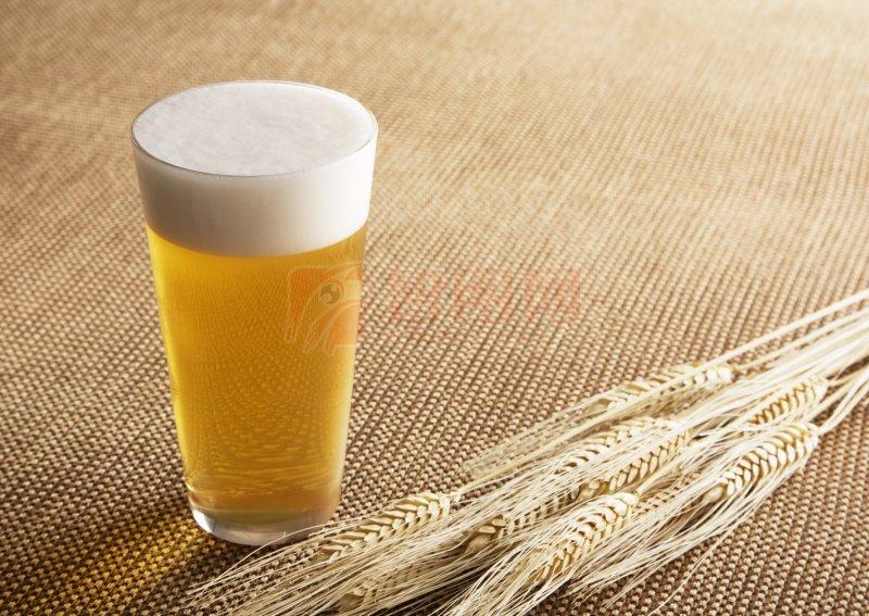 啤酒元素02
