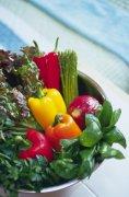 蔬菜摄影素材