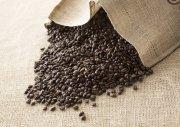 咖啡豆澳门永利赌场网址
