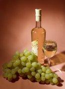 葡萄酒摄影01