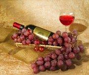 葡萄酒摄影02