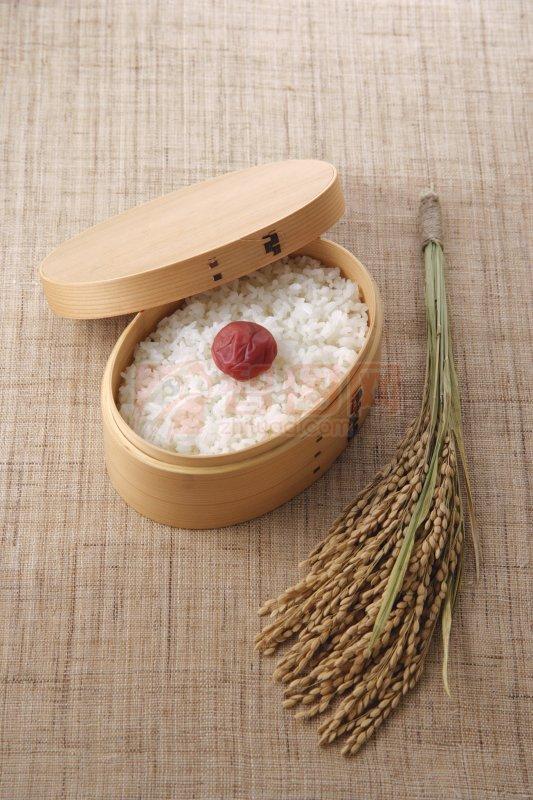 传统美食  关键词: 高清米饭 黄色饭盒 红色大枣 稻穗元素 米饭摄影
