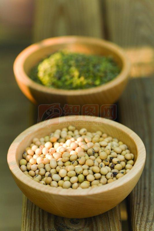 摄影专区 生物世界 其它生物  关键词: 高清豆子 彩色豆子 两碗豆子