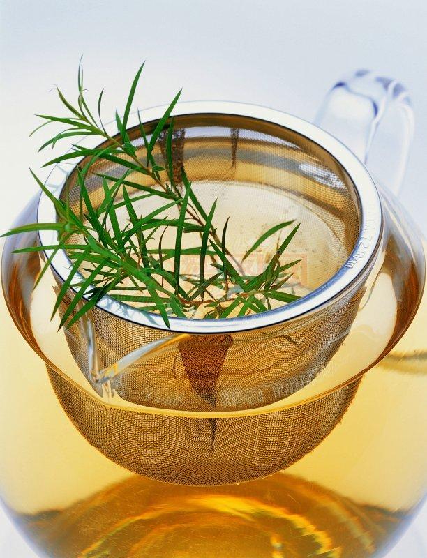 茶水圖片 花盆圖片 創意模板 攝影圖片下載