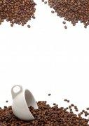 咖啡豆摄影05