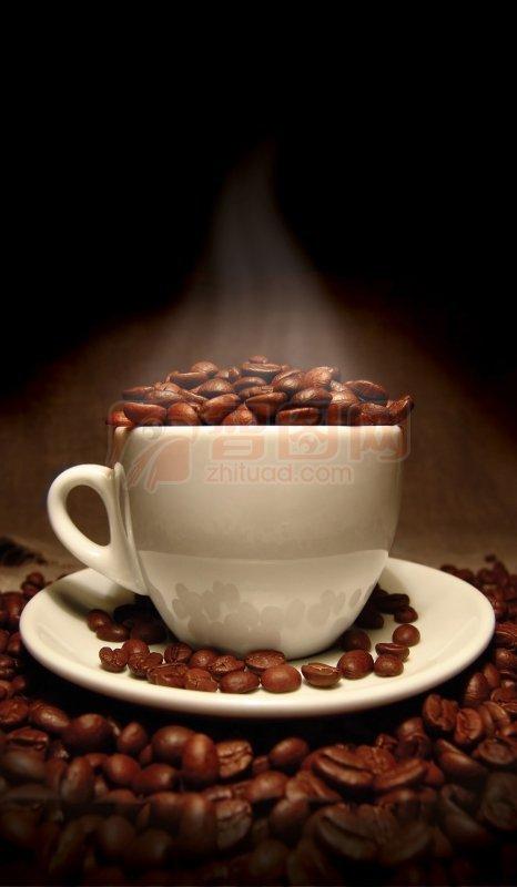 咖啡豆摄影04