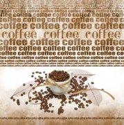 咖啡豆摄影03