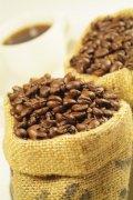 咖啡豆摄影