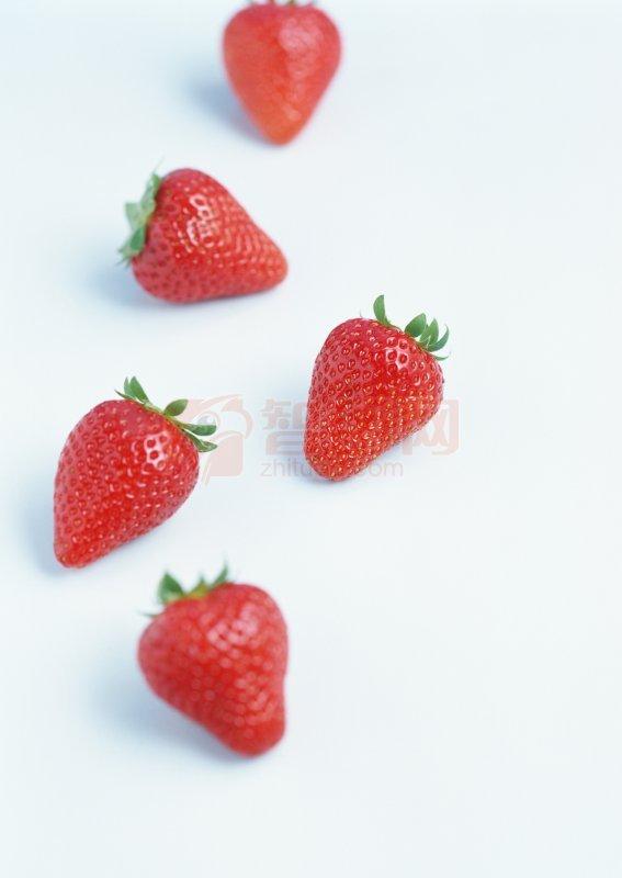 草莓图片02