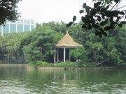 绿树青湖凉亭