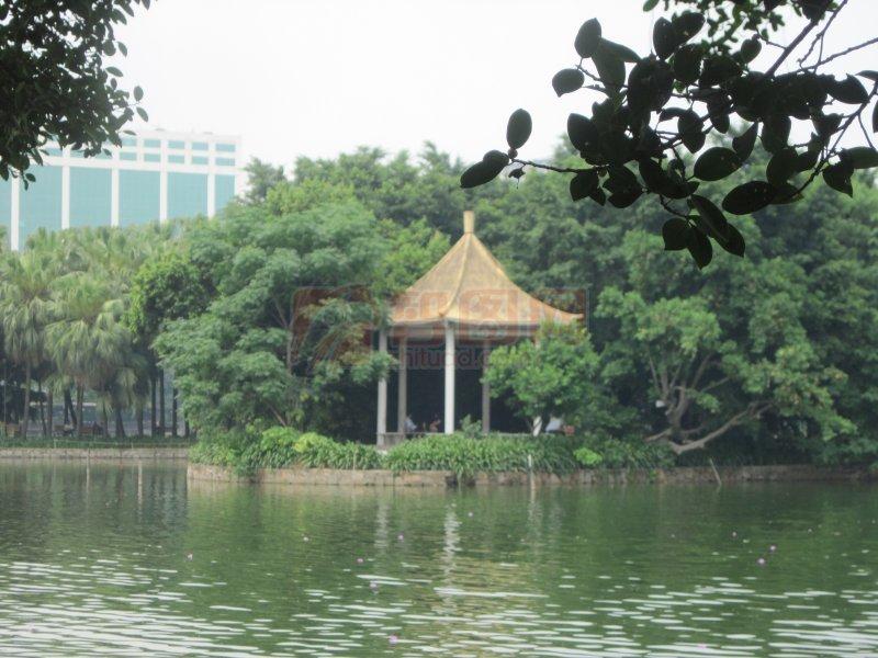 綠樹青湖涼亭