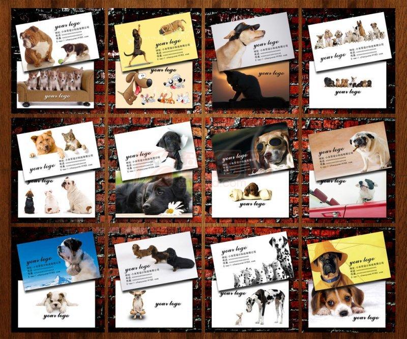 ps分层专区 广告设计 名片/卡类  关键词: 说明:-宠物店名片 动物名片