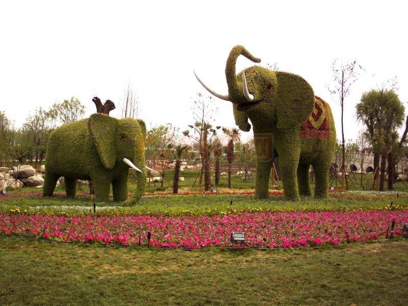 东南亚大象风景