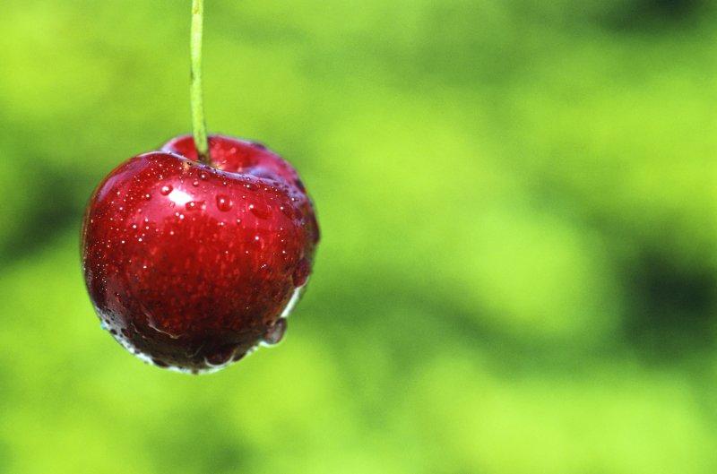 精美的樱桃素材