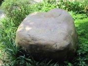草地大石頭