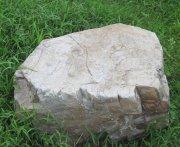 草坪大石頭