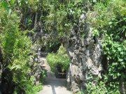花林假石山