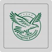 大鹏展翅标志 大鹏形象logo 雄鹰logo 大鹏标志