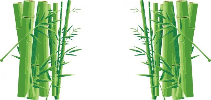 竹子色彩简笔画