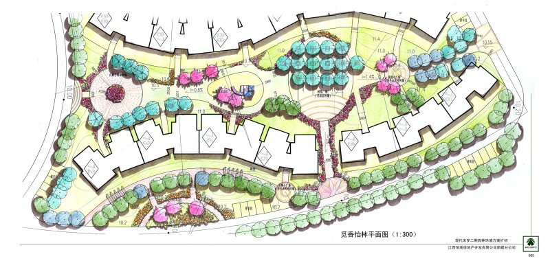 园林 设计 平面