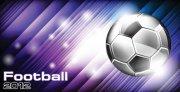 2012世界杯 2012足球热卖海报