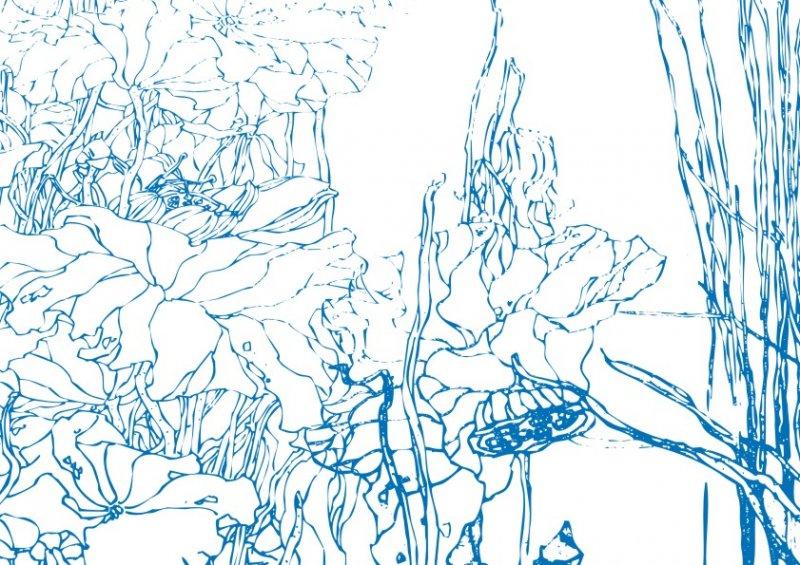 【cdr】河边小草莲叶-工笔画