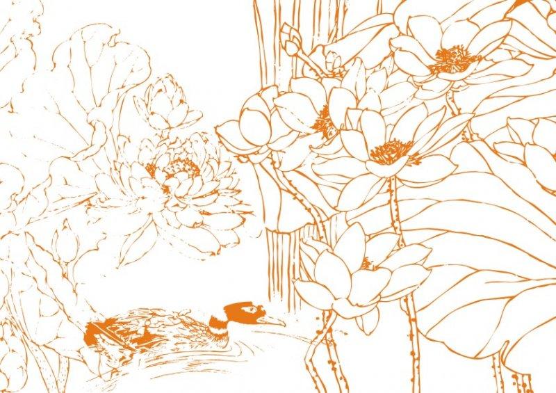 【cdr】荷花池戏水-线条画图片