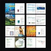 保健品健康画册版式设计模版下载