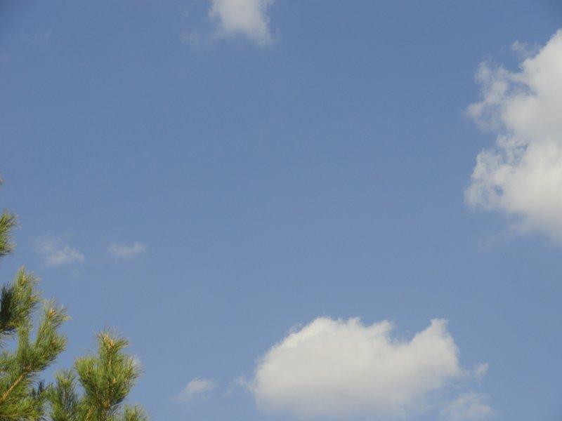 蓝天白天素 蓝天白天背景 蓝天映衬 蓝天背景图 蓝天空 蔚蓝天空素材