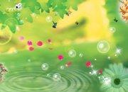 小河绿叶泡泡