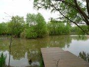 南京绿博园景观