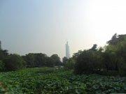 玄武湖远看紫峰大厦