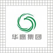 华鹰集团logo设计 环形鹰形象标志 原创应形象标志下载