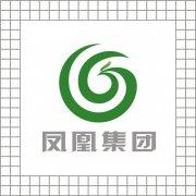 鳳凰集團LOGO設計 鳳凰標志下載 原創標志購買