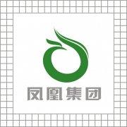 凤凰集团LOGO设计 原创标志购买 LOGO买断版权
