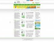 门户网站模板